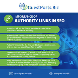 Importance-of-Authority-Links-in-SEO